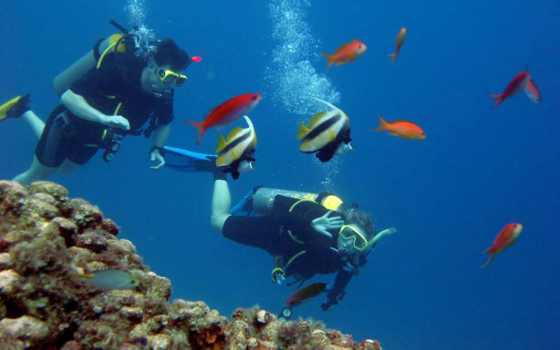 diving-maremma-1
