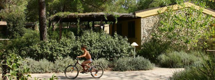 panoramica-bungalow